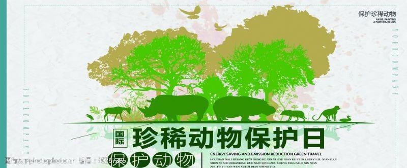狮子珍惜动物保护日图片
