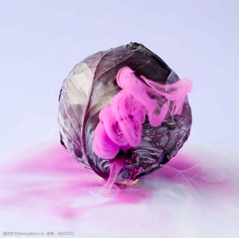 梨紫白菜图片