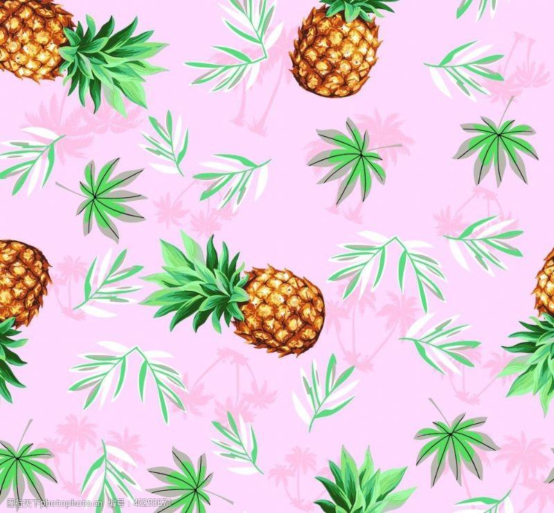 女装菠萝图片
