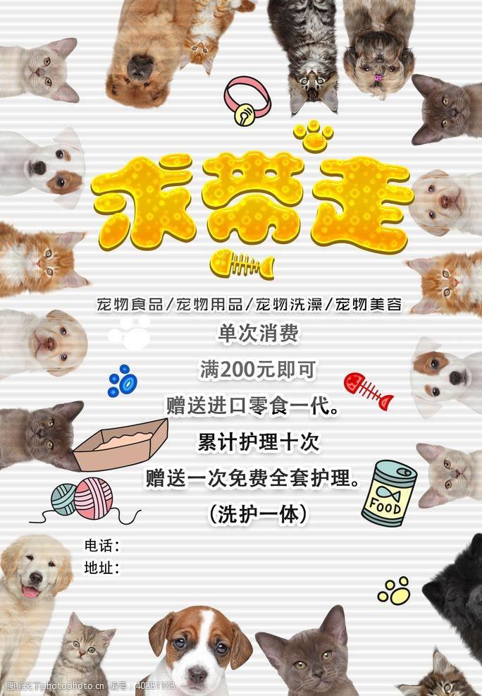国内广告设计宠物促销海报图片