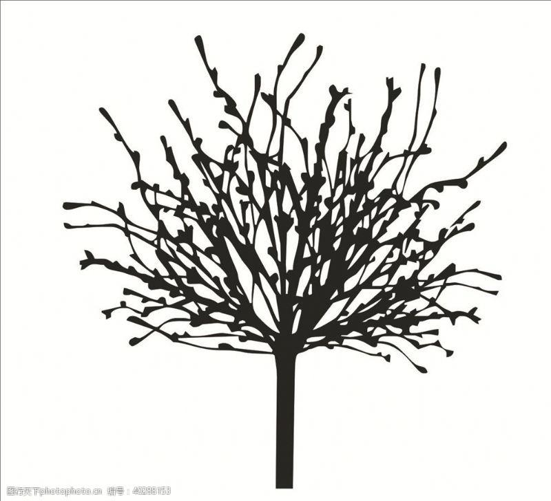 古树抽象树枝图片