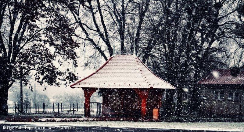 雪花风景图片