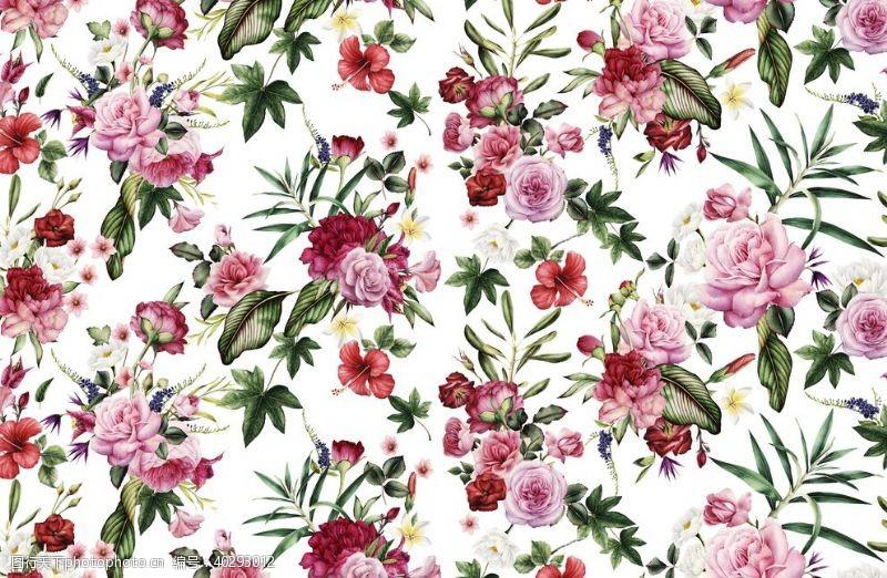 碎花花卉图片