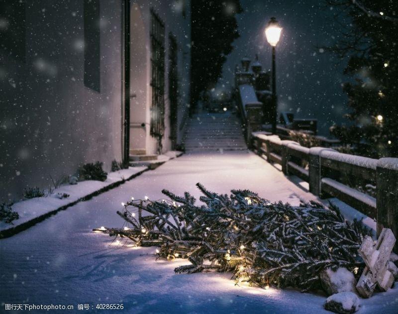 人物图库圣诞节树冬天图片