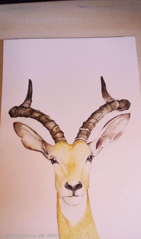 水彩鹿元素图片