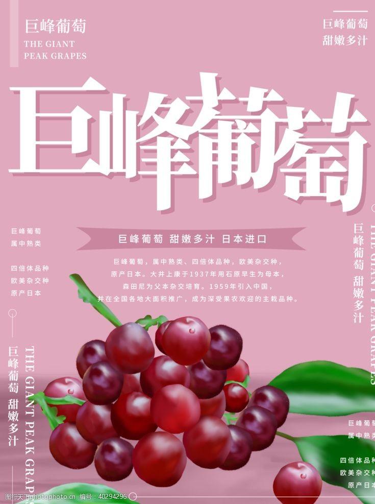 食品海报水果海报图片