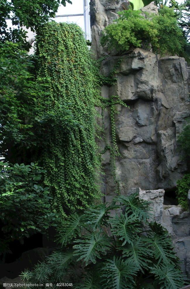 园林绿化温室风景图片
