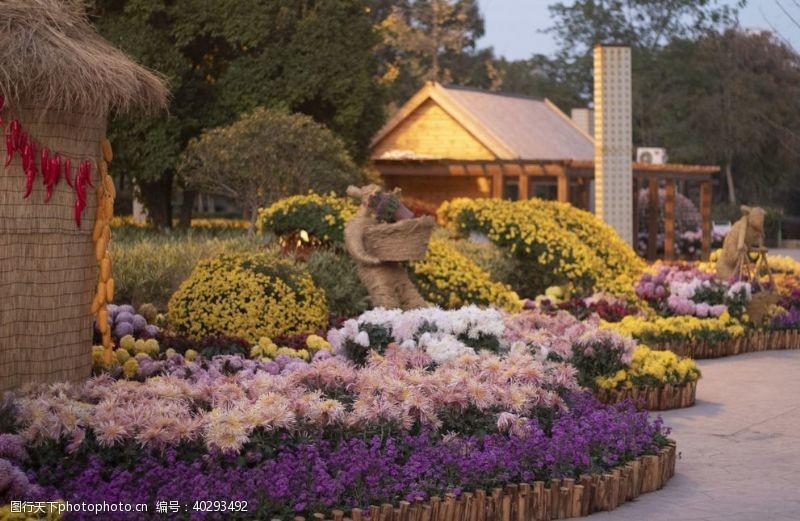 国内旅游武汉沙湖公园菊展图片