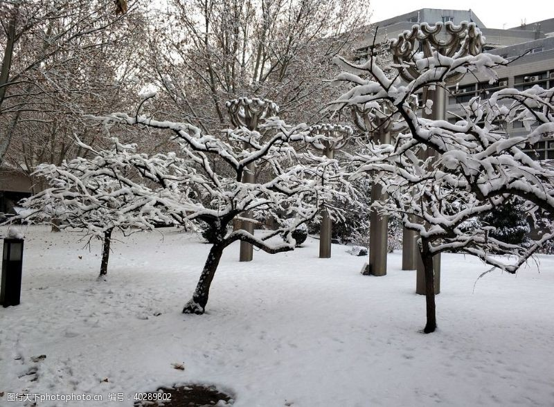 白雪校园雪景图片