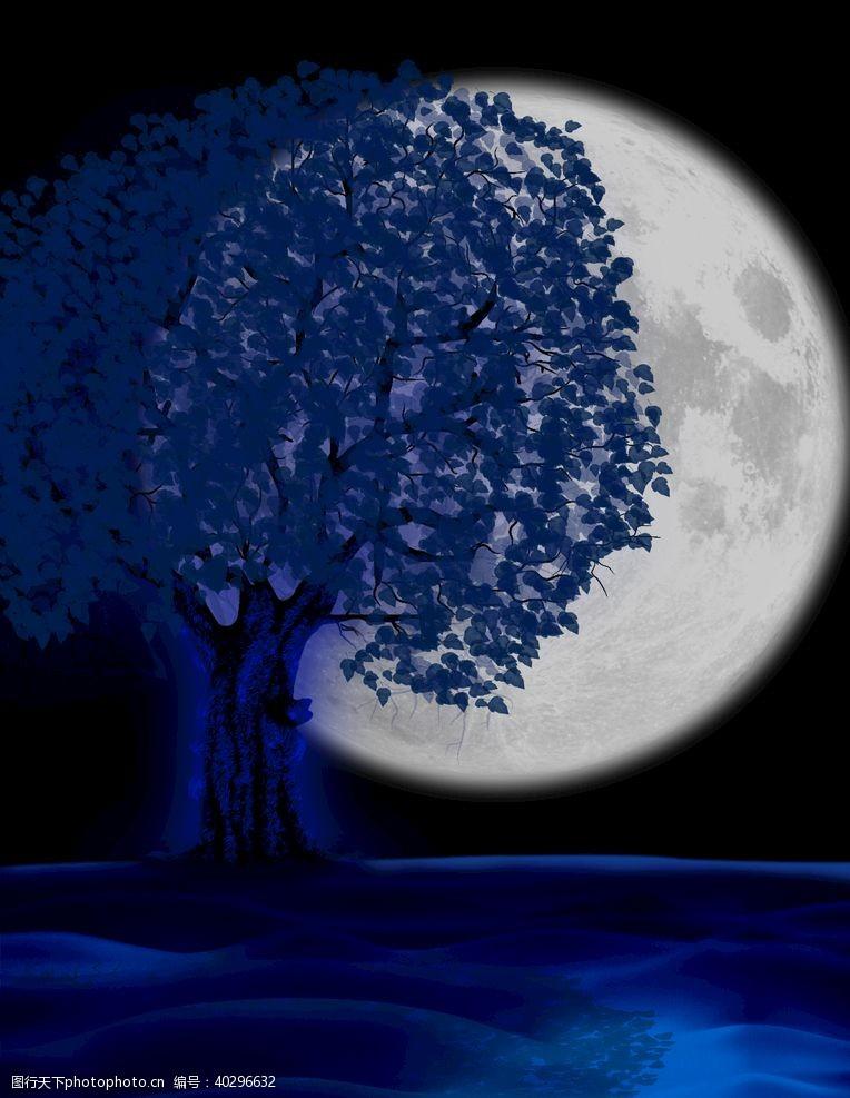 唯美月下树图片