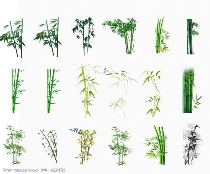 竹子素材图片