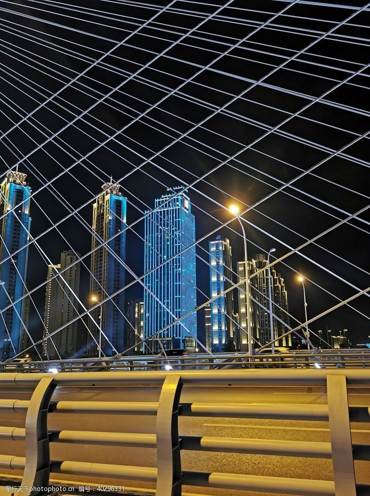 风景武汉月湖桥夜景图片