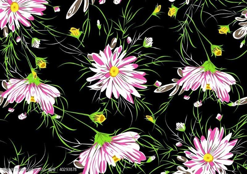 线条花图片