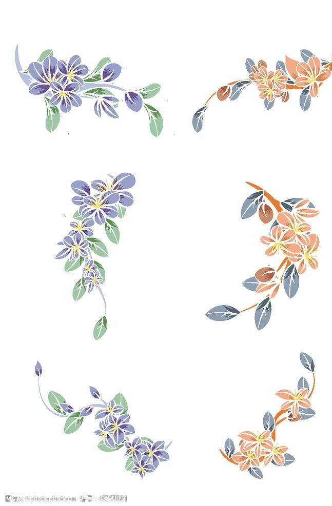 金色小清新植物花朵图片