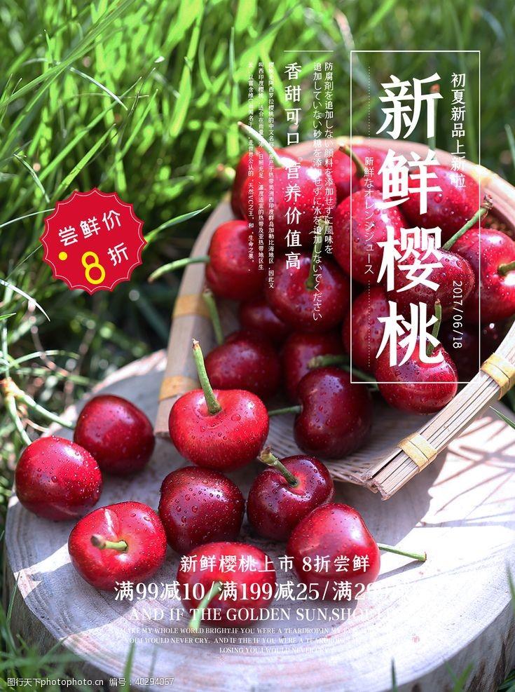 种植樱桃图片